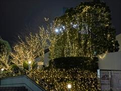 東京ドーム イルミネーション